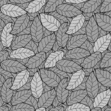 Abstract foliage, leaf seamless background Royalty Free Stock Photography