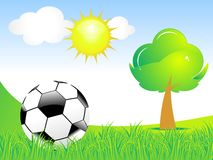 Abstract football with green grass & tree Stock Image