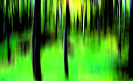 Abstract forest Stock Photos