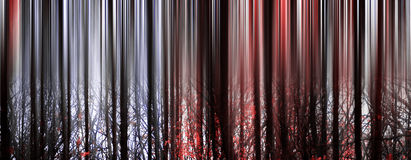 Free Abstract Forest Royalty Free Stock Photography - 35436987