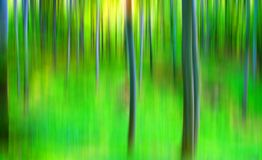 Abstract forest Royalty Free Stock Photo