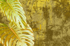 Free Abstract Forest And Foliage Royalty Free Stock Image - 601596