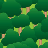 Abstract forest background Stock Photo