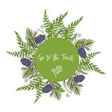 Abstract forest background with wild plants. Pine, fern, wood sorrel. Vector illustration Royalty Free Stock Photography