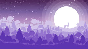 Abstract forest landscape scenery with wolf on the moonlight on full moon looking at the sky Stock Image