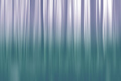Abstract forest Royalty Free Stock Image