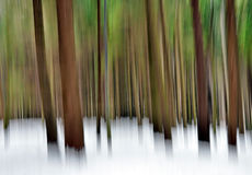 Abstract forest in winter royalty free stock photos