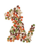 Abstract form of pieces of dog food. Stock Photography