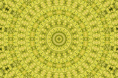 Abstract fractal background: asparagus Stock Image