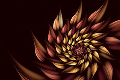 Abstract fractal background, spiral, flower. Abstract fractal background a computer-generated 2D illustration, spiral, flower Royalty Free Stock Images