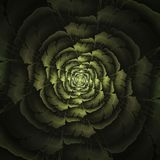 Abstract fractal bloemcomputer geproduceerd beeld royalty-vrije illustratie