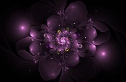 Abstract fractal bloemcomputer geproduceerd beeld Stock Fotografie
