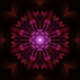 Abstract fractal design. Abstract symmetrical fractal design on black background Royalty Free Stock Photos