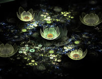 Abstract fractal field of flowers. On the black background Stock Photo