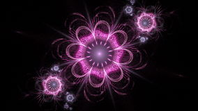 Abstract fractal flower animated background for design. Seamless loopable. HD video clip. stock footage