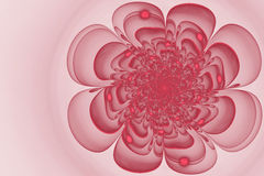Abstract fractal  flower Royalty Free Stock Image