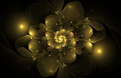 Free Abstract Fractal Flower Computer Generated Image Stock Image - 79428551