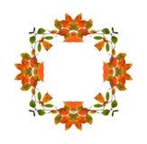 Abstract fractal frame als achtergrond Royalty-vrije Stock Afbeeldingen