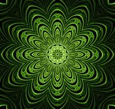 Abstract fractal futuristisch groen patroon Royalty-vrije Stock Foto