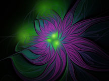 Abstract fractal purple and green flower Royalty Free Stock Images
