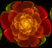 Abstract fractal red flower Stock Image