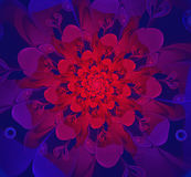 Abstract fractal red-purple flower. Computer generated image of abstract fractal red-purple flower Royalty Free Stock Photos