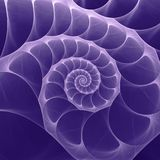 Ultraviolet Nautilus Sea Shell Swirl. Ultra Violet - Trendy Color of the year 2018 Royalty Free Stock Photos