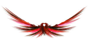 Abstract Fractal Wings Royalty Free Stock Image