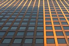 Abstract fragment of contemporary architecture. Low angle perspective view of mordern office building`s exterior with glass window royalty free stock images