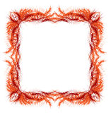 Abstract frame. Abstract-designed frame s. Are grouped royalty free illustration