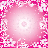 Abstract frame. Abstract frame with spring flowers on a pink background Stock Images