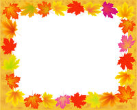 Abstract frame with autumn. Stock Image
