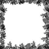 Abstract frame for congratulations cards Royalty Free Stock Photo