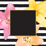 Abstract Frame with Lily Flower. Natural Background. Vector Illu Royalty Free Stock Photo