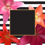 Abstract Frame with Lily Flower. Natural Background. Vector Illustration vector illustration