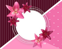 Abstract Frame with Lily Flower. Natural Background. Vector Illustration Stock Photography