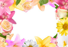 Abstract Frame with Lily, Rose and Other Flowers. Natural Backgr Stock Images