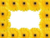 Abstract frame met gele bloemen Royalty-vrije Stock Afbeeldingen