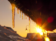Abstract frozen thawing icicles . Royalty Free Stock Photography