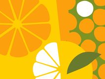 Abstract fruit design in flat cut out style. Oranges and orange sections. vector illustration