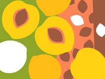 Abstract fruit design in flat cut out style. Peaches and peach pits. vector illustration