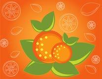 Abstract fruit Illustration  orange Stock Photo