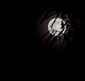 Abstract full moon background blur. Royalty Free Stock Photos