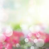 Abstract garden background Stock Photos