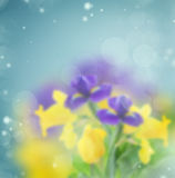 Abstract garden background Royalty Free Stock Photo