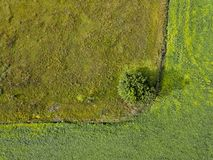 Panoramic view from flying drones to agricultural fields with dirty trail and green bush. Top view. stock photography