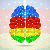 Abstract geometric human brain from. Colorful triangles Royalty Free Stock Photography