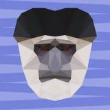 Abstract geometric polygonal colobus monkey cartoon portrait Royalty Free Stock Images