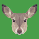 Abstract geometric polygonal deer Stock Photography