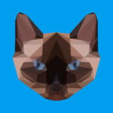 Abstract geometric polygonal siamese cat Royalty Free Stock Photo